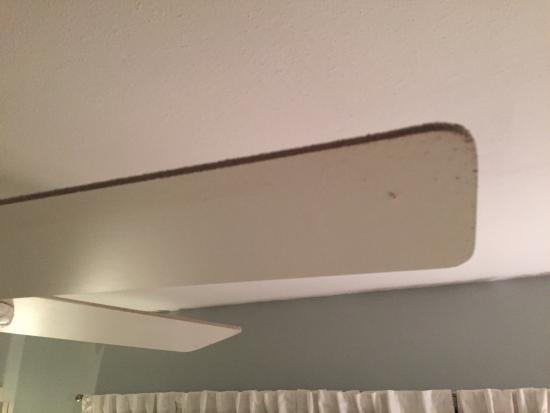 Rockport, TX: This is one of the disgusting ceiling fan blades in the bedroom