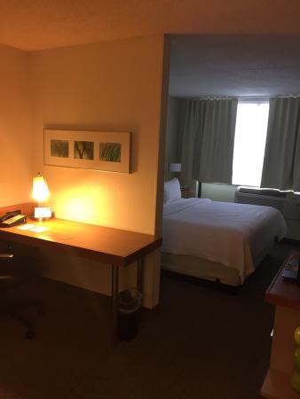 SpringHill Suites Cincinnati North/Forest Park : Standard King Room 209