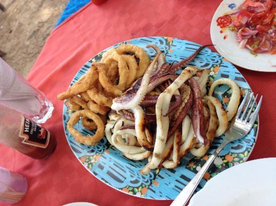 Colobus Shade: Fried and Grilled Calamari