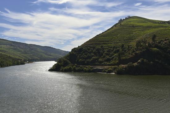 Rota do Douro River Cruise - Day Tours: Folgosa, as vistas da mais estrada do mundo, Nac. 222.