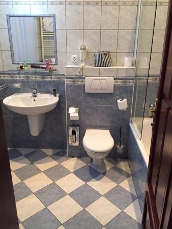 Cerny Slon: Single room