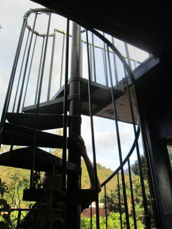 Hacia El Sur Hostal: Stairway leading to rooftop restaurant