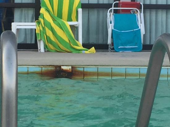 kingfisher inn updated 2018 hotel reviews garden city beach sc tripadvisor - Garden City Inn