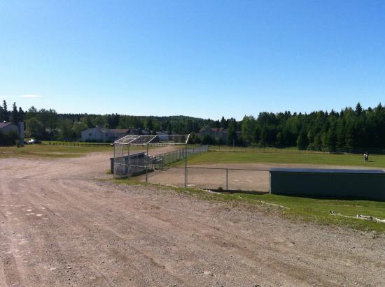Dyer's Field