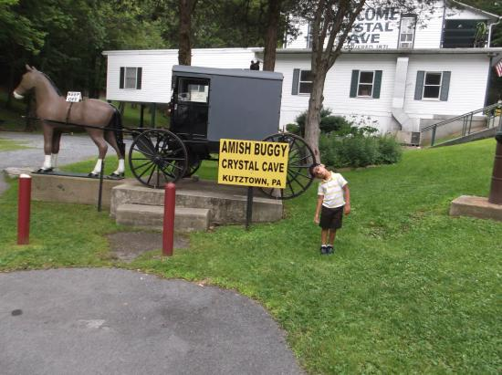 Kutztown, PA: Amish Buggy