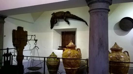 Camaldoli, Italy: Bilance, vasi di terracotta e...coccodrilli?!