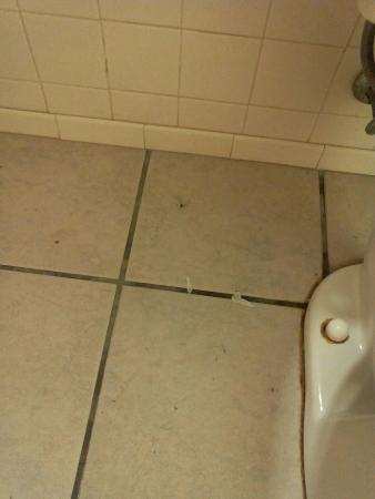 Red Carpet Motel - Knoxville: Bathroom floor