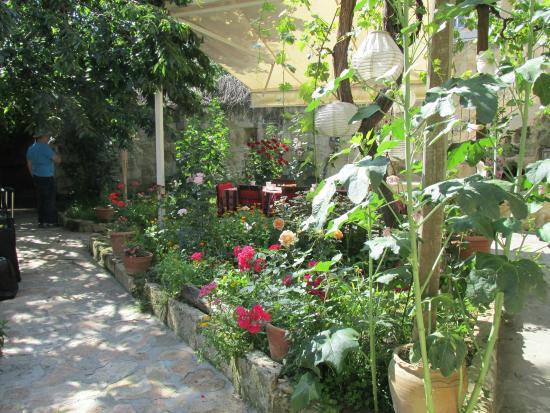 Heaven Cave House: Jardins do Hotel