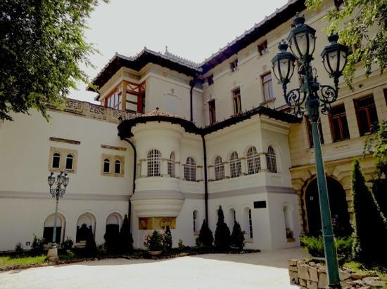Palacio de Cotroceni: magnificent palace