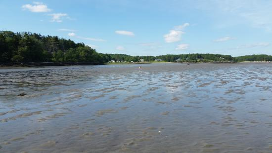 Sagadahoc Bay Campground: Low tide