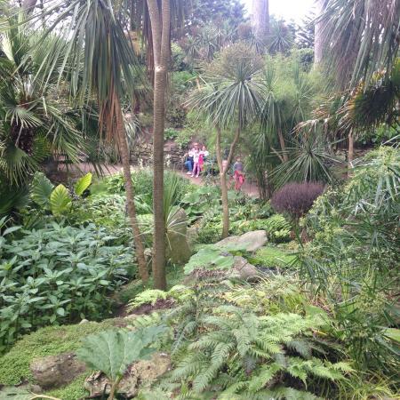 Jardin exotique de l 39 ile de batz picture of jardin georges delaselle ile de batz tripadvisor - Photo de jardin exotique ...