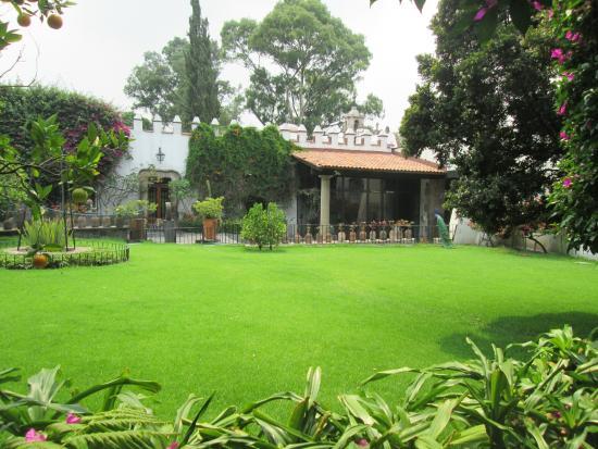 Jardin interior picture of museo dolores olmedo patino for Jardines olmedo