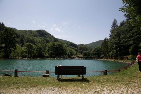 Una vista del lago photo de lago lo specchio pistoia tripadvisor - Ristorante lago lo specchio ...