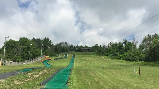 Chicopee Ski & Summer Resort: Tubing on left, zip lines centre/right of image.