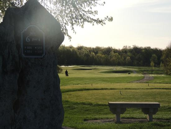 Stone Tree Golf #6