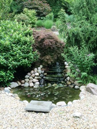 Vevay, IN: Waterfall in the back yard