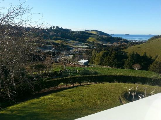 Matakana Castle: Beautiful view to wake up to.