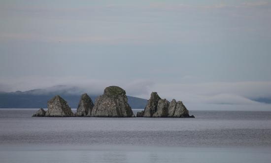 Ocean Delight Cottages: Shag Rock 11