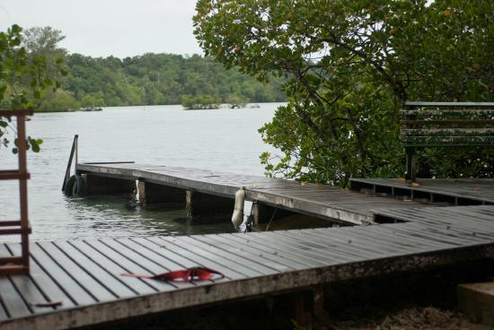 Uepi Island Resort: Dive Jetty