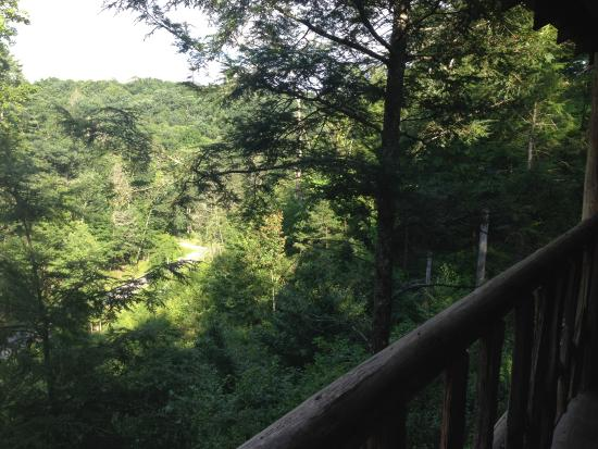 Jerico Bed & Breakfast: View from porch