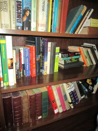 Downtowner Motor Inn: The bookshelf in the common area.