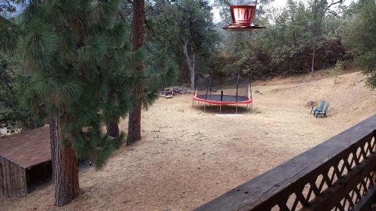 Evergreen Haus: Playground