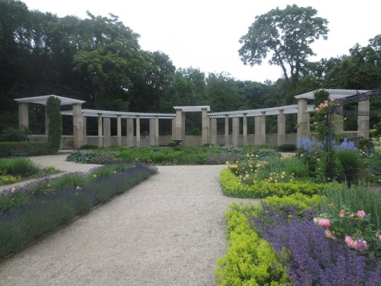rose garden in the tiergarten picture of tiergarten. Black Bedroom Furniture Sets. Home Design Ideas