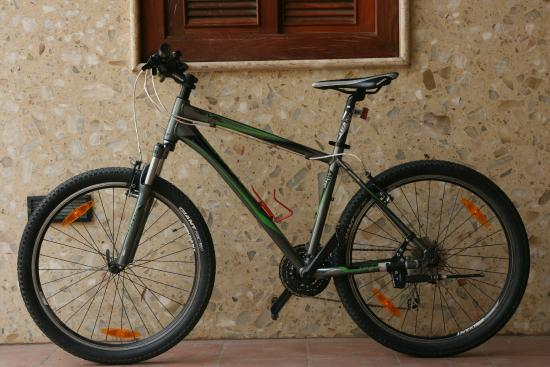 Giant Revel 2 V-Brake 2013 - Picture of Aing Kimsan Bicycle Shop and