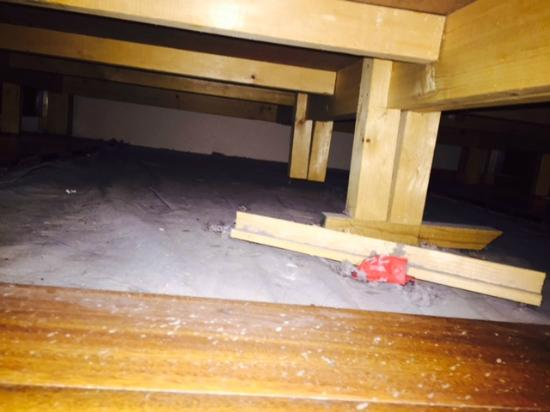 Pine Drive Resort : Unbelievable amount of dust and crap under the bed!!!!