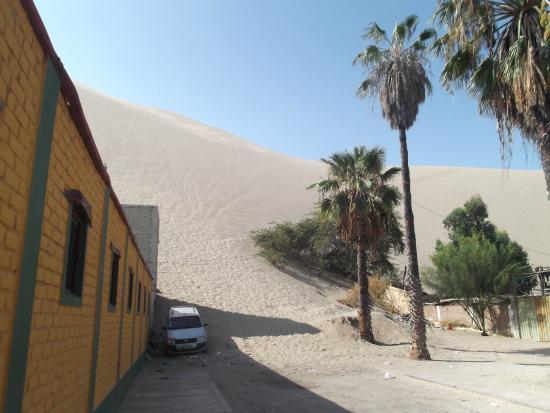 Carola del Sur: Desde la puerta...ya se pueden divisar las dunas...