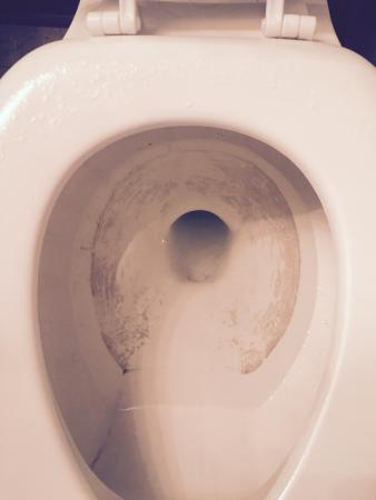 Sound of the Sea Condominiums: This is our dirty toilet.  At first I thought it was stained, so I took the toilet brush to the
