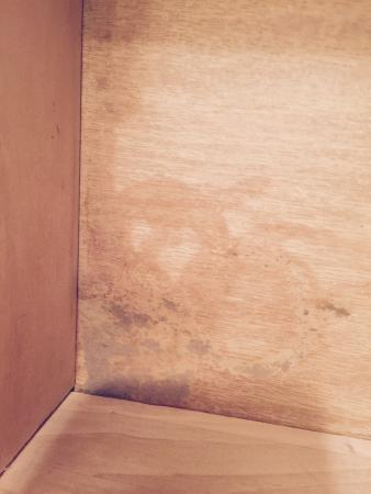 Sound of the Sea Condominiums: This is the mold in the drawer of the bedroom with twin beds.