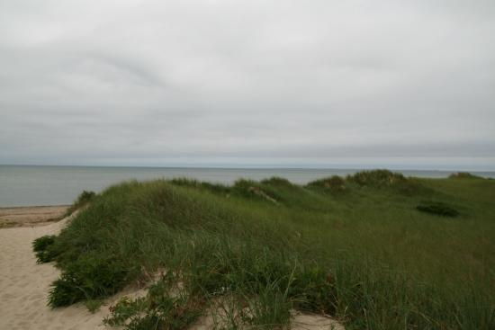 Duck Harbor Beach: short walk from the parking to beach