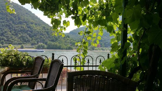 Rheinhotel  Zum Anker: Romantische Weinlaube