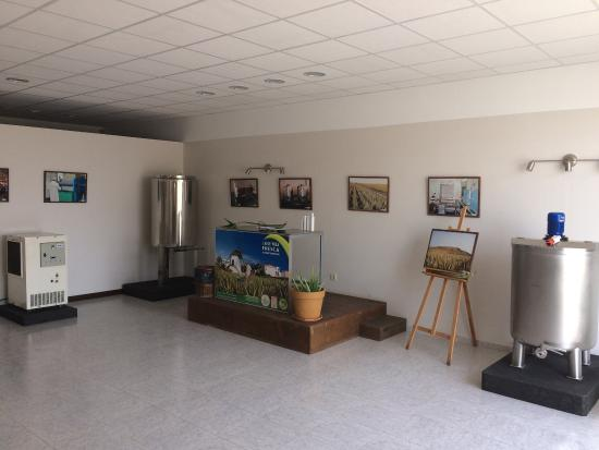 Ла-Олива, Испания: Very nice museum