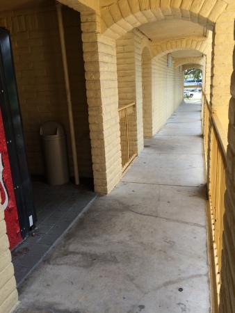 La Quinta Inn Tampa Bay Pinellas Park Clearwater: Escadaria, corredores e estacionamento. Sem manutenção e limpeza alguma.