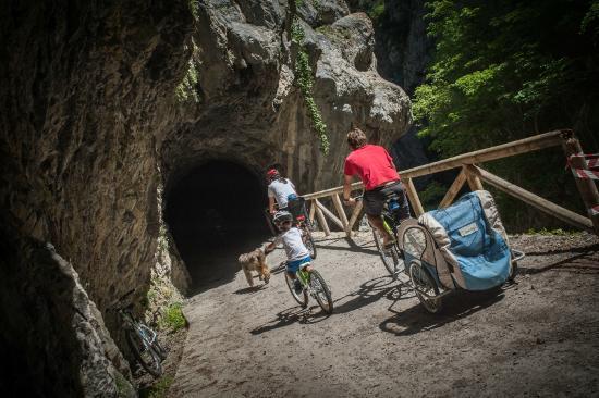 Муниципалитет Теверга, Испания: Descenso en bici de la Senda del Oso con TeverAstur