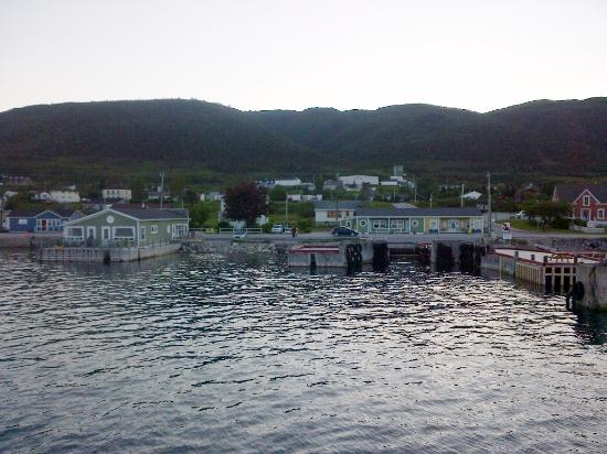 ‪‪Seaside Suites Gros Morne Newfoundland‬: View of Both Buildings from the water‬