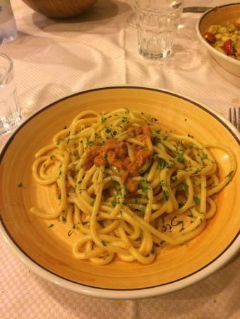 Spaghetto ai ricci e bottarga foto di sicilia in tavola siracusa tripadvisor - Sicilia in tavola siracusa ...