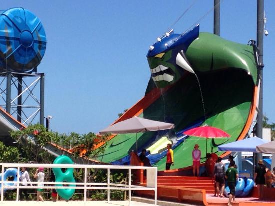 Cartoon Network Amazone - Picture of Cartoon Network Amazone, Jomtien Beach -...