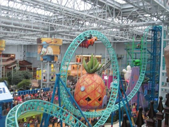 Four Unlimited Ride Passes for One Day to the Nickelodeon Universe Amusement Park at Mall of America ($ value) Four Flying Dutchman Ghostly Gangplank Tickets ($44 value).