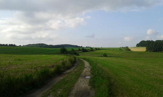 Książ Landscape Park