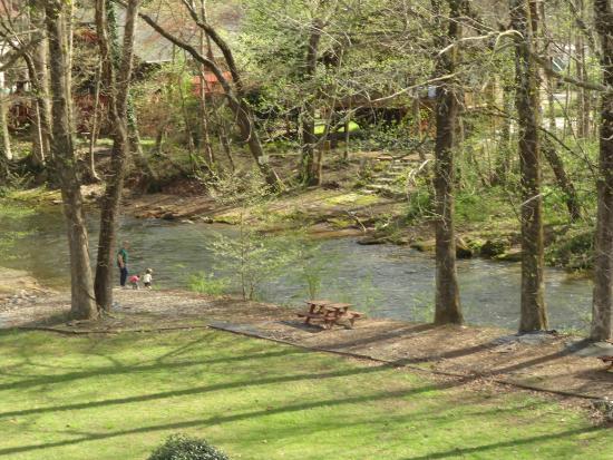 Hampton Inn Helen: The deer was gone before I came back with camera