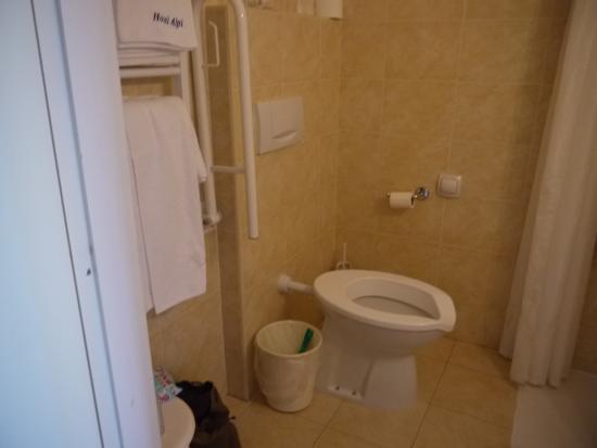 Hotel Alpi: Toilet