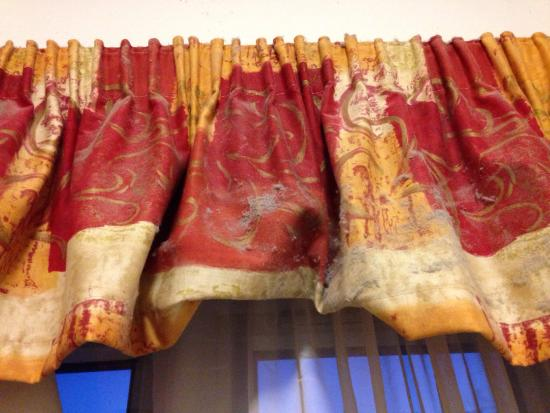 Chiswick Lodge Hotel : Dirty curtains and sheets