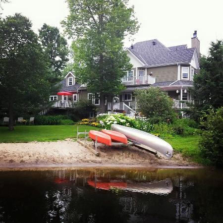Rosseau's Northern Landing Bed and Breakfast: Backyard and sitting areas