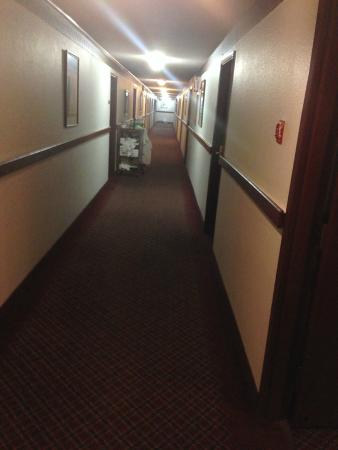 Sutton Suites And Extended Stays: diny corridors