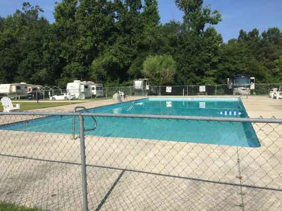 Rocky Point, Carolina del Norte: Photos of our trip. Pond and swimming pool.