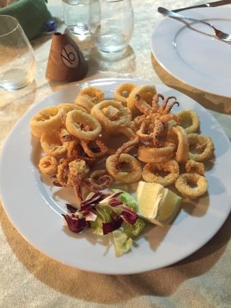 La Tribbita: Calamari fritti! Che croccantezza!