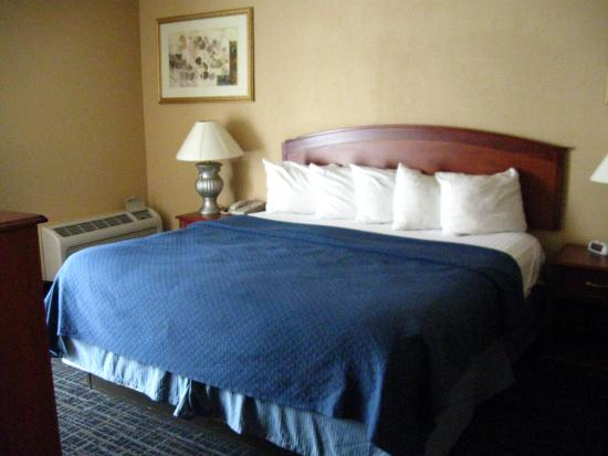 Clarion Hotel and Conference Center : Great bed